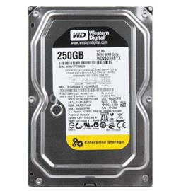 "Western Digital 3,5"" HDD SATA-III 250GB 64MB Cache, Re, WD2503ABYZ"