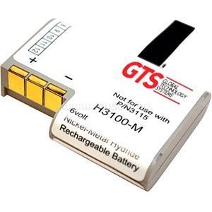 GTS PDT3100 NIMH BATT 750 6V KT-12596-04R/21-36897-02