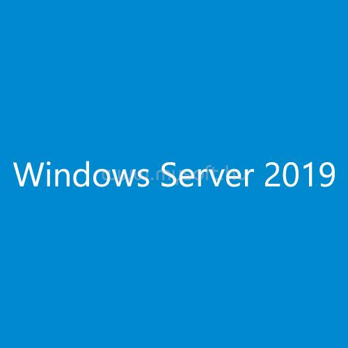 WINDOWS Server CAL 2019 Hungarian 1pk DSP OEI 1 Clt User CAL